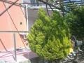 Fotoğraf0311